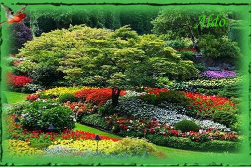 PPS Butchart Gardens