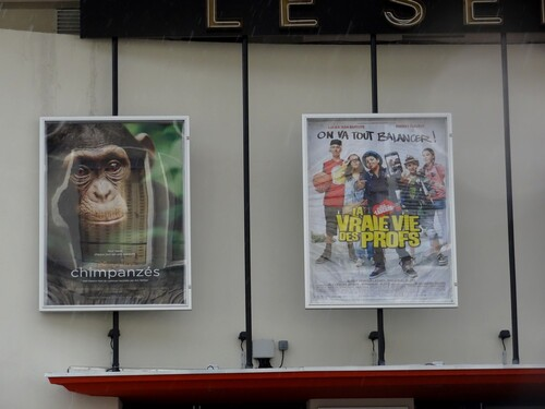 """Le cinéma """"le Select"""" de Châtillon sur Seine a rouvert ses portes !"""