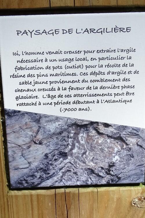 Les kaléïdoscopes du Lac de Léon (2/3)...