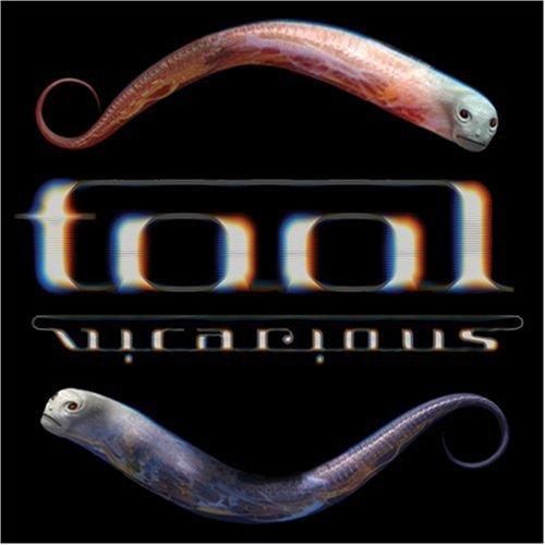 "100 Tool – ""Vicarious"""