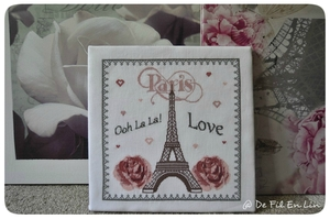 I love Paris (3)