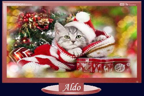 PPS Noël des animaux