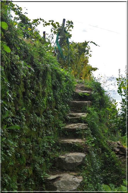 Italie, les 5 Terres : sur le sentier côtier N°2 vers Monterosso