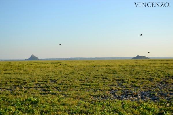 Normandie mont saint michel deux 823