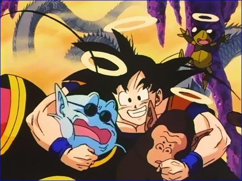 "Dragonball Z ""Youpiiiii!!!!"""