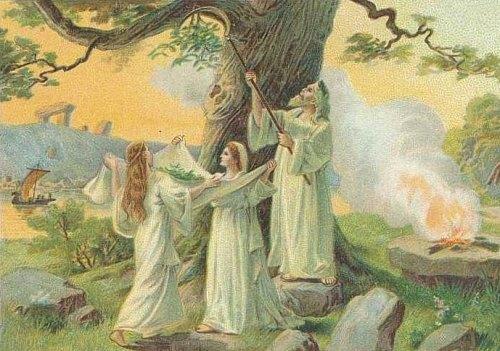 La cueillette du gui par les druides