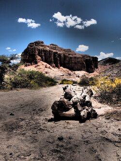 Le long de la ruta 40, des fois on se croirait en Utah!