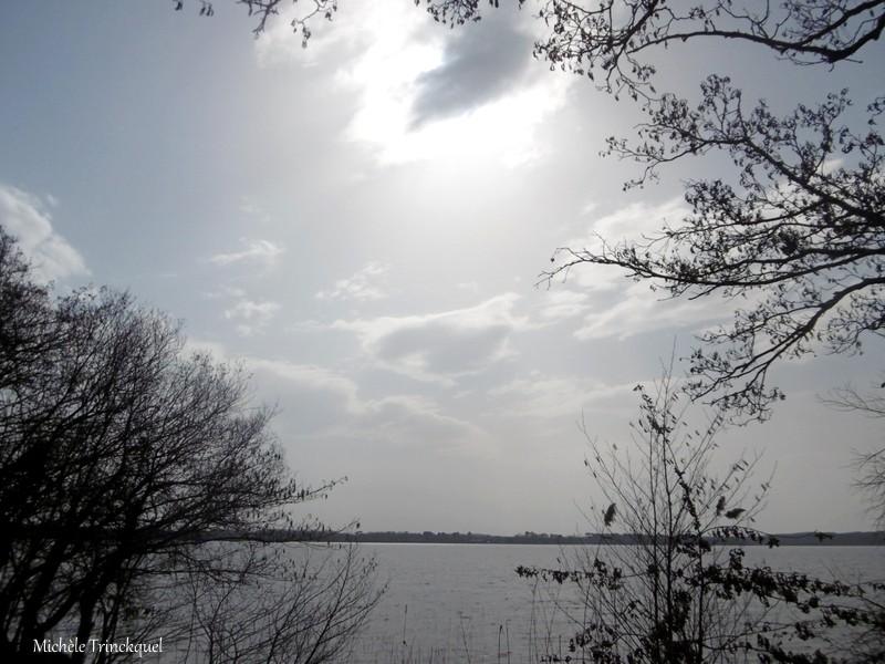 Une balade à la Plage de VIELLE (VIELLE-ST GIRONS 40), le 2 mars...