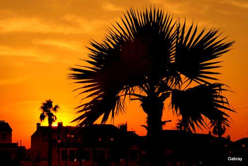 Barcarès: soleil du soir en juillet