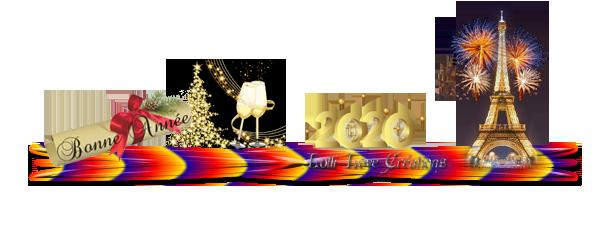 Quelle année 2020 aimerais-tu ?