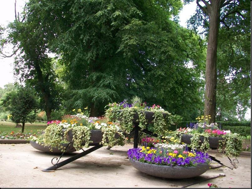 le parc arboretum de jumet001