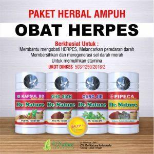 Obat Penyakit Herpes De Nature
