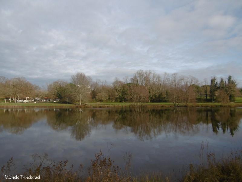 Une balade autour du Lac de Christus à ST PAUL LES DAX (40), le 21 décembre (suite)...