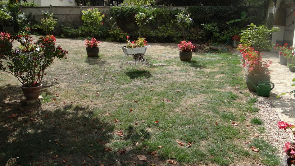 Voilà le Temps de s'occuper du Jardin + le bouquet de la Fin de Semaine