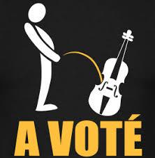 Vous avez voté pour ça ?