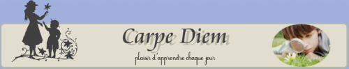 ressources IEF: Carpe Diem