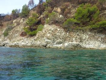 Près de la côte dans la Baie de Briande