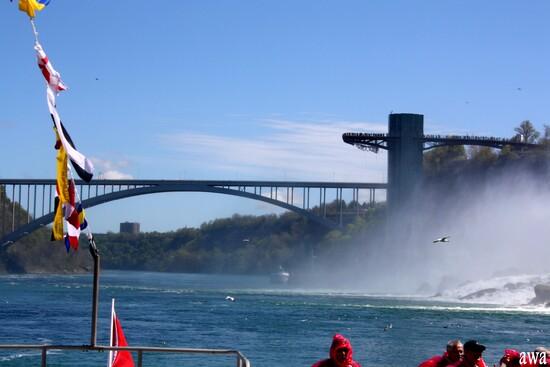 Les Chutes du Niagara (1)