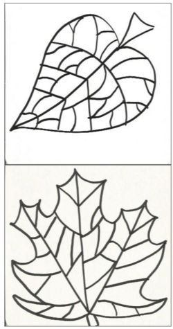 Feuilles d'automne graphiques Cycle 2
