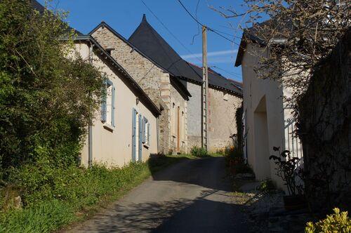 Saint Aubin de Luigné: variante Chaume