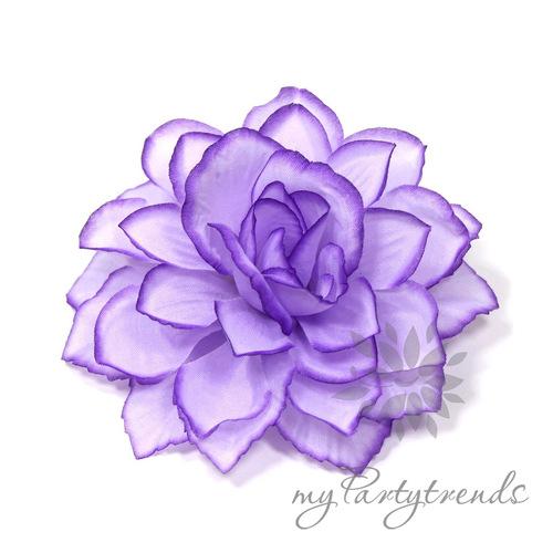 Belle Roses Mauves, Violettes