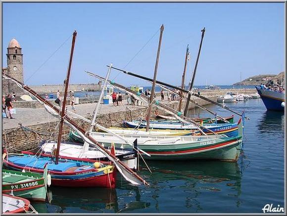 Collioure_Aout07_303