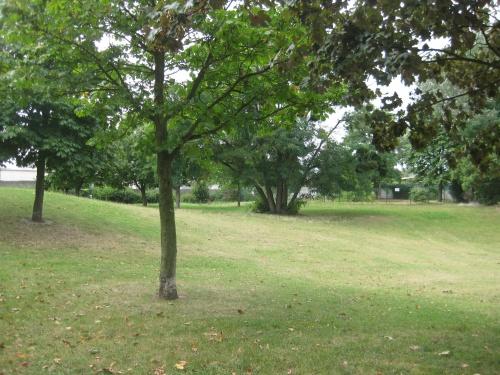 Pique nique dans le parc