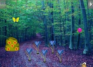 Jouer à Communal forest escape