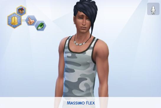 Massimo Flex