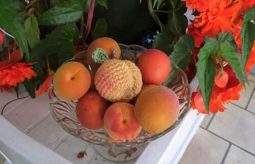La dînette gourmande : la tomate et l'abricot