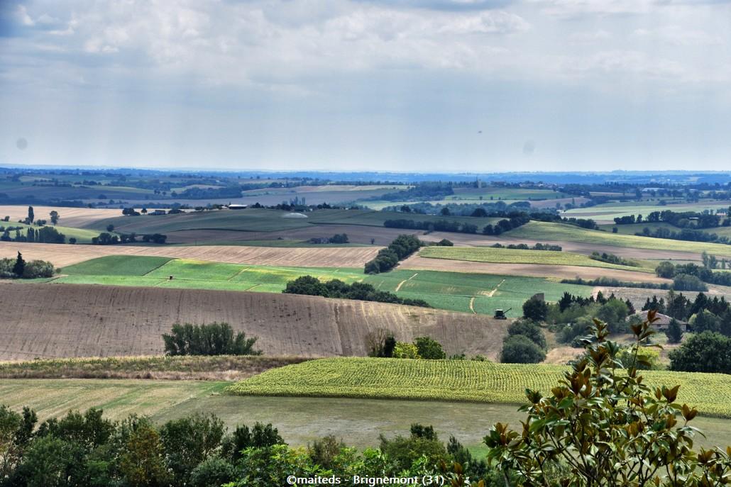 Brignemont - Haute-Garonne