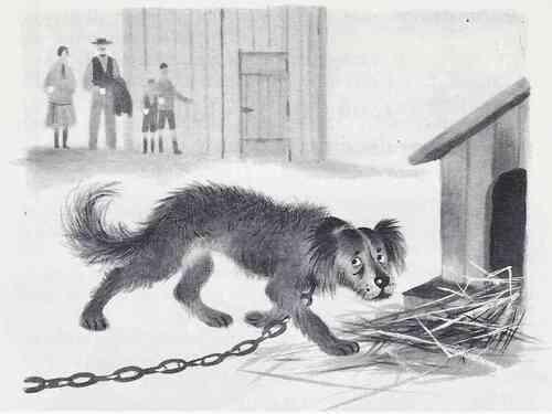 Le chien déchaîné (Jules Renard)
