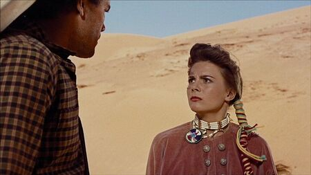 12_the_searchers__Blu_ray
