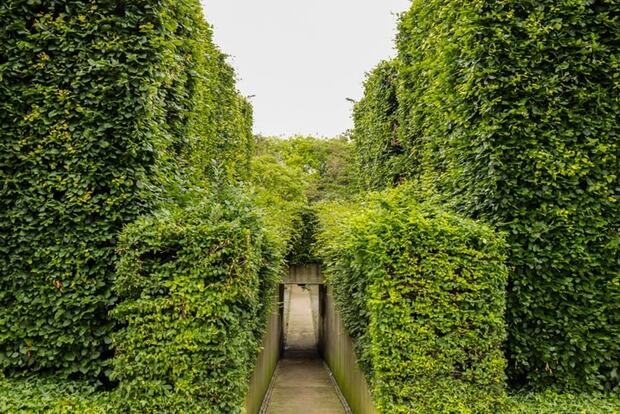 Végétation luxuriante, Parc André-Citroën