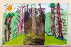 Arts visuels et paysages