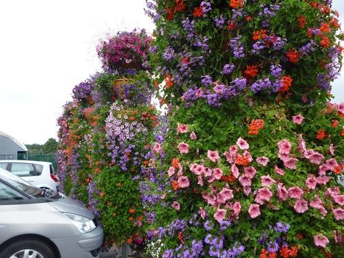 chez le marchand de fleurs........ !!!