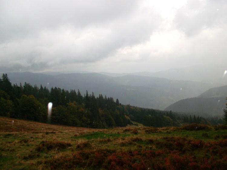 Vosges-vallée de Munster