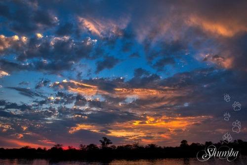 On the Okavango river -Mahango Bwabwata NP buffalo core area