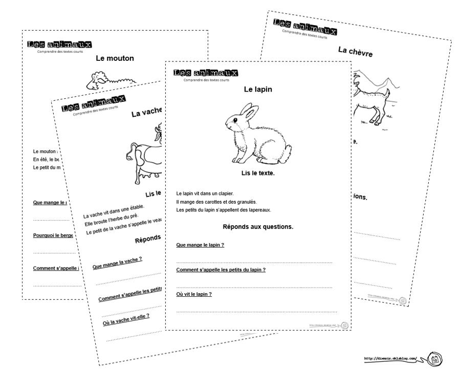 Petits Textes Pour Travailler La Lecture Et La Comprehension En Cp Dix Mois