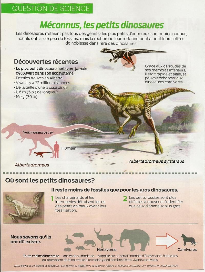 Question de science:  Méconnus, les petits dinosaures