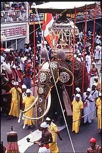171113-kandy-perahera-kandy-sri-lanka