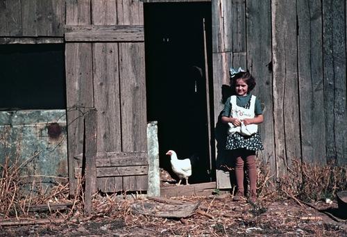 07 - Poules et enfants