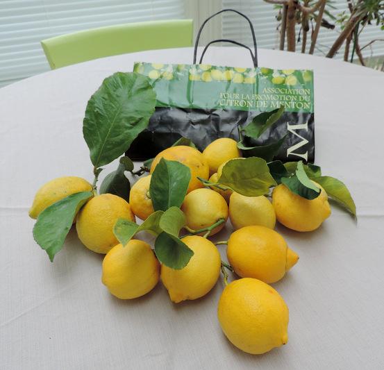 A propos du Citron de Menton...