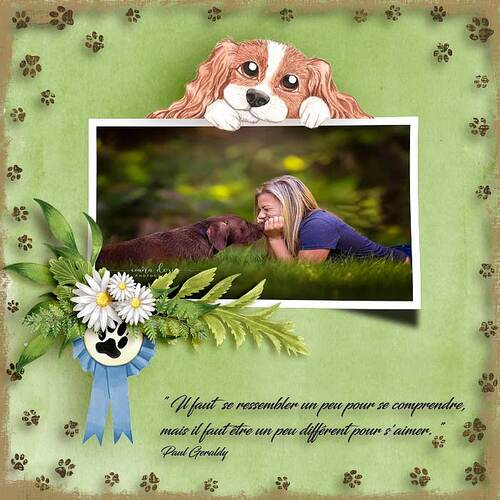 Raining Cats and Dogs by dentelle scrap