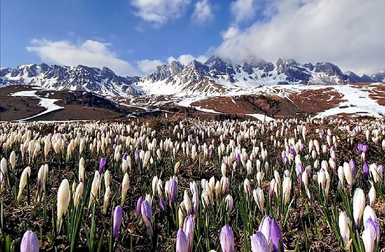 Images du monde : Montagnes  en Suisse