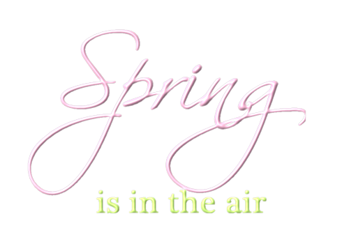 P.U SPRING IN THE AIR
