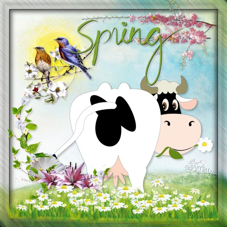 atelier fleurs de printemps