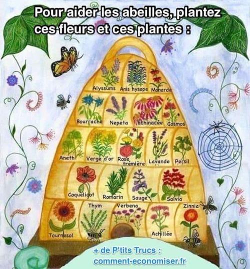 Comment aider les abeilles
