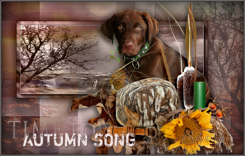 Autumn song - Page 2 Automn11
