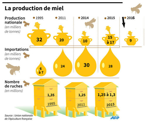 La production de miel en France